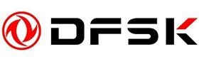 DFSK1